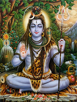 Lord Shiva is Parabrahman for Shaivities